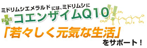若々しく元気な生活をサポート!!「コエンザイムQ10」