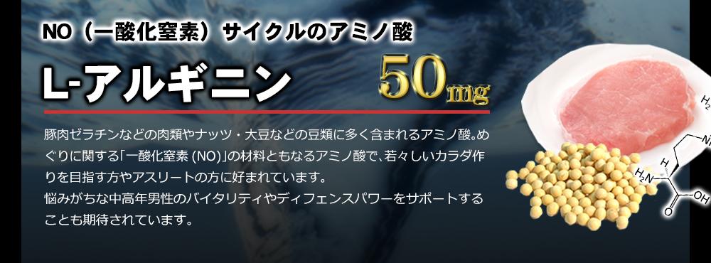 NO(一酸化窒素)サイクルのアミノ酸 L-アルギニン 50mg配合